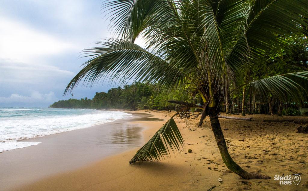 co zrobić i zobaczyć w Kostaryce